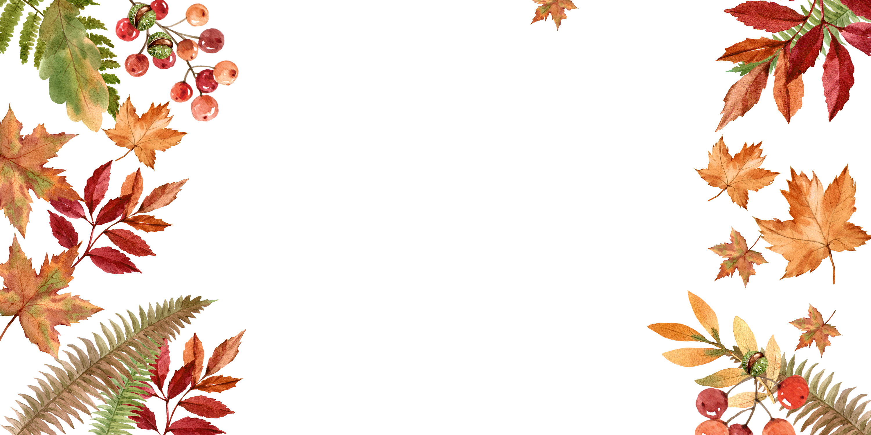 dival-notebook-autumn-sale